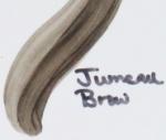 jumeau-brow