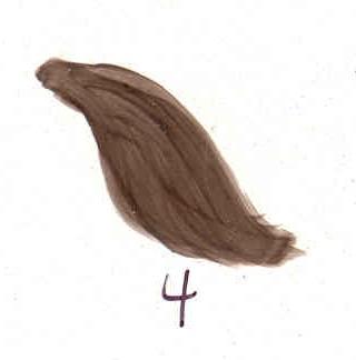 dark-hair-brown